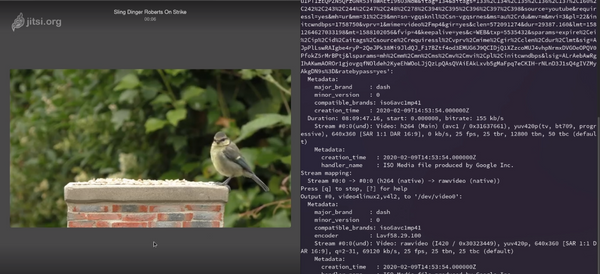 Using FFMPEG and V4l2 Loopback to Play YouTube Videos as a WebCam